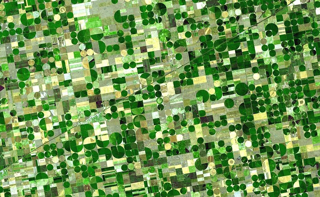 Satelliet beeld van akkers